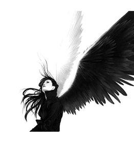 T-Daawg angel 60/6