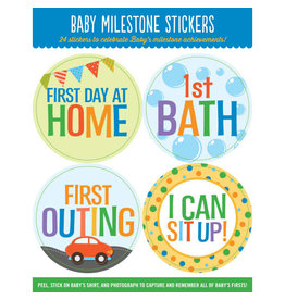 PETER PAUPER PRESS BABYS MILESTONE STICKERS
