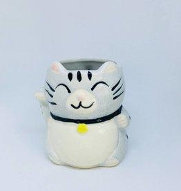 Lucky Silver Tabby Cat Mug