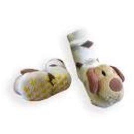 Piero Liventi Boogie Toes