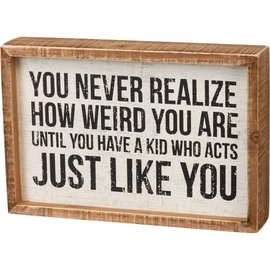 Primitives by Kathy Inset Box Sign - You Never Realize How Weird