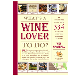 Workman Publishing Co WHAT'S A WINE LOVER TO DO? Book