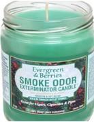 Smoke Odor Exterminator Evergreen Berries - Smoke Odor Eliminator Candle