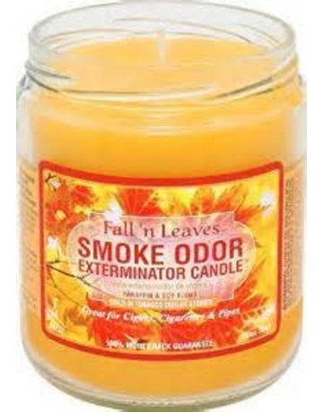 Smoke Odor Exterminator FALLN-CANDLE: FALL'N LEAVES TOP