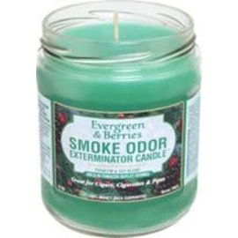 Smoke Odor Exterminator EVERGREEN-CANDLE: EVERGREEN & BERRIES CANDLE