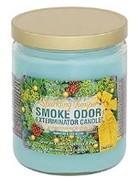 Smoke Odor Exterminator Sparkling Juniper - Smoke Odor Eliminator Candle