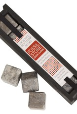 Fossil Stone Large Drink Cubes