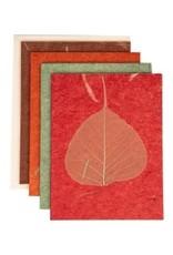 Wisdom Card Set