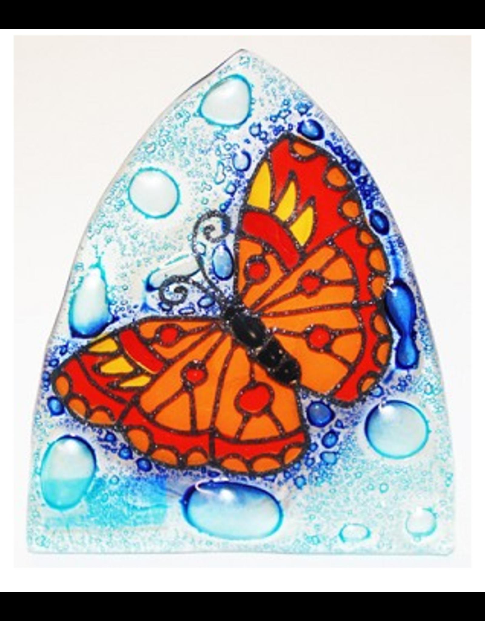 Glass Nightlight Butterfly, Ecuador