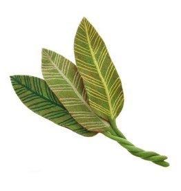 Felt Calathea Leaf, Green Veins, Nepal