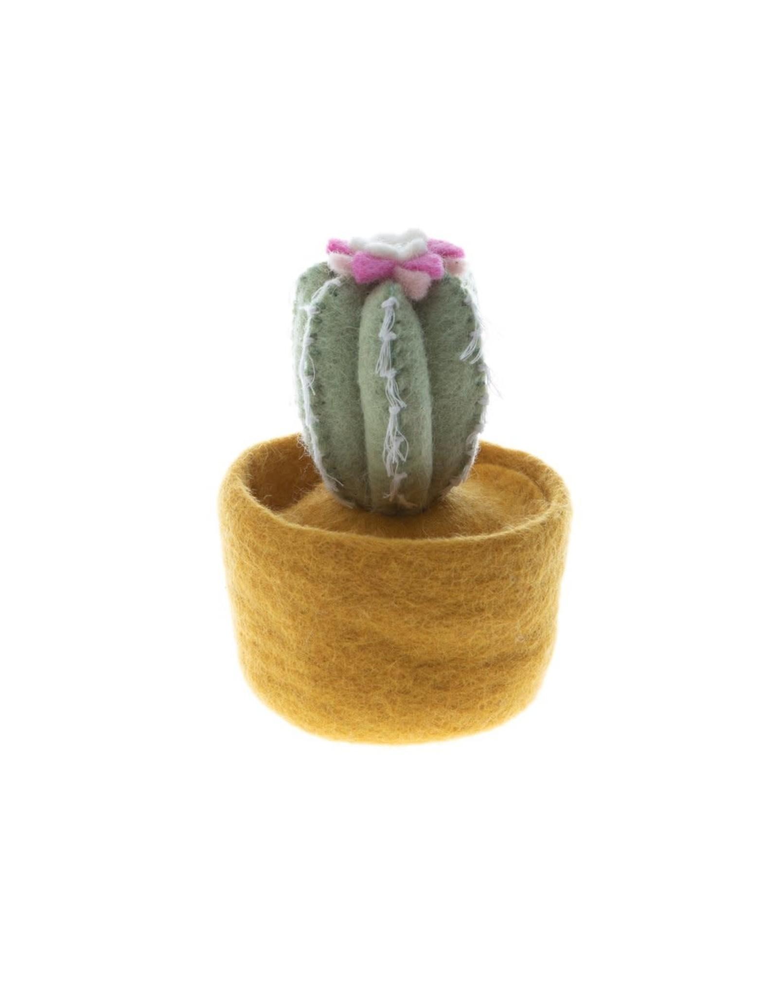 Nepal, Cactus and Succulent Pots- Yellow Pot