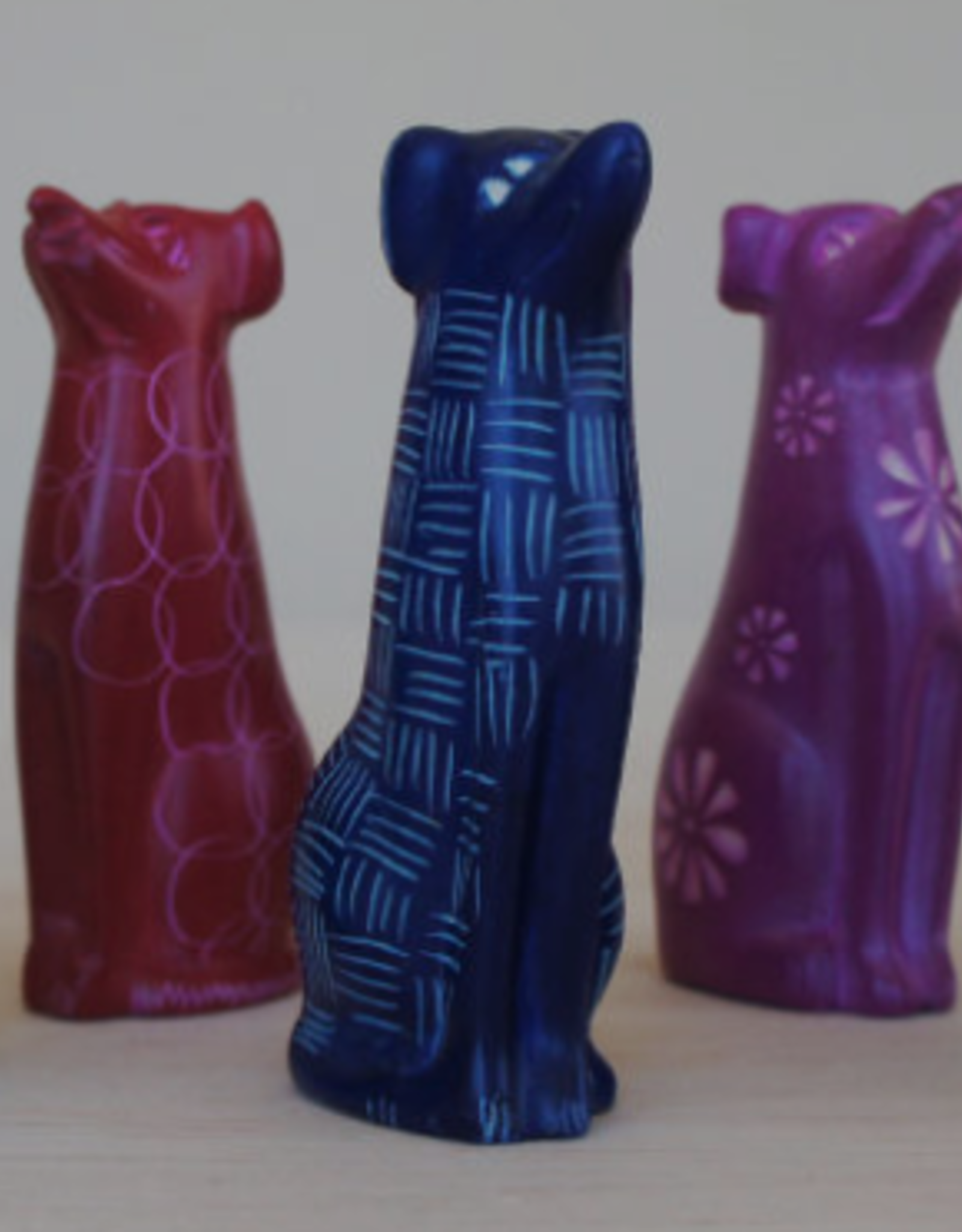 Kenya, Bright Sitting dog, Blue or Red
