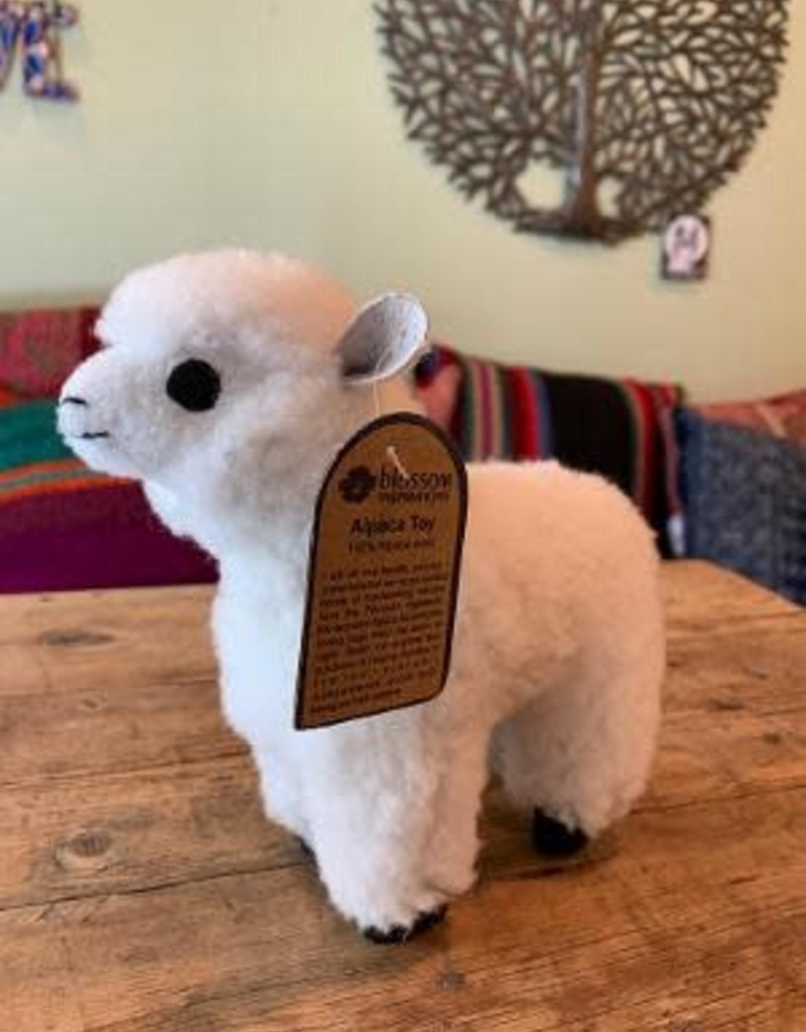 Bolivia, Medium Llama