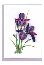 Quill Enclosure Cards Iris, Vietnam