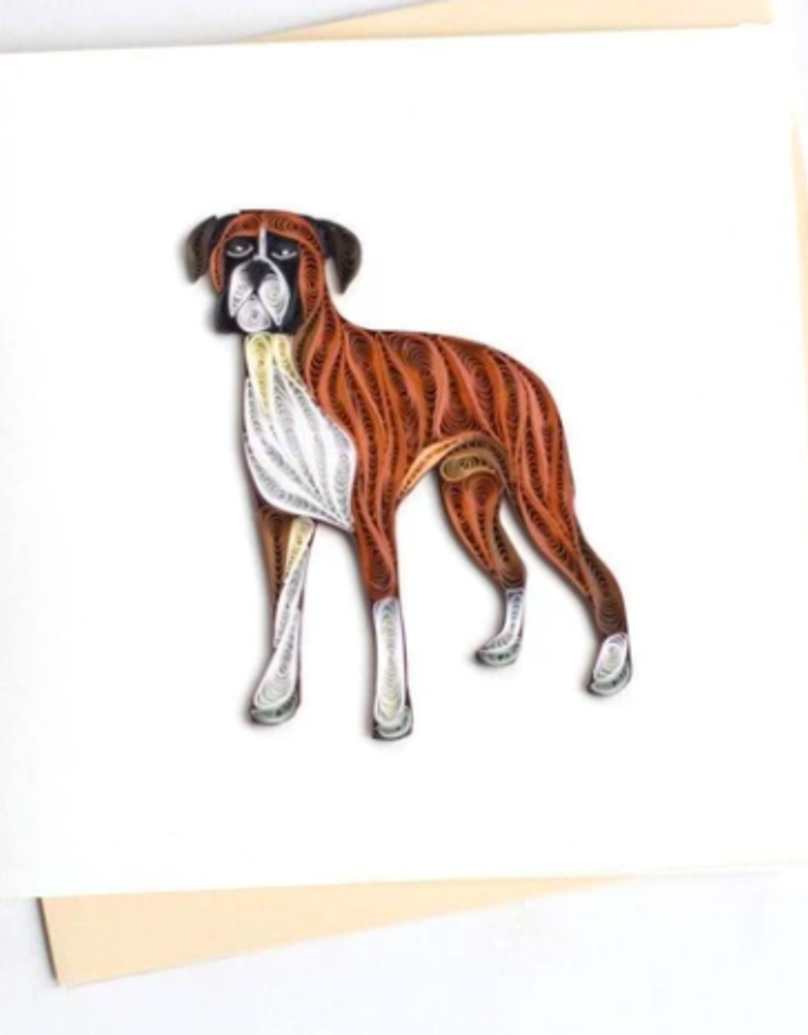 Boxer, Quill Card