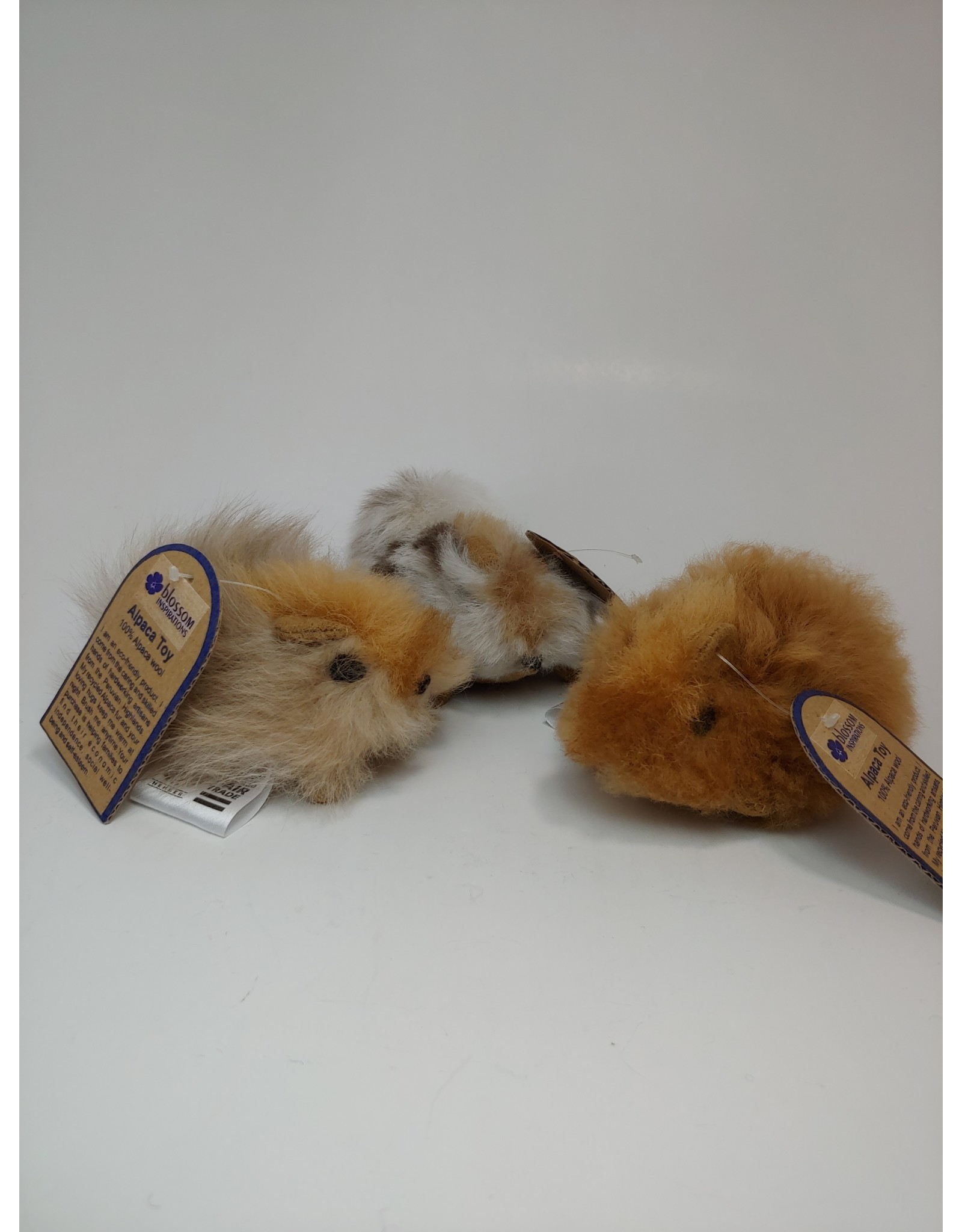 Peru, Alpaca Hamster