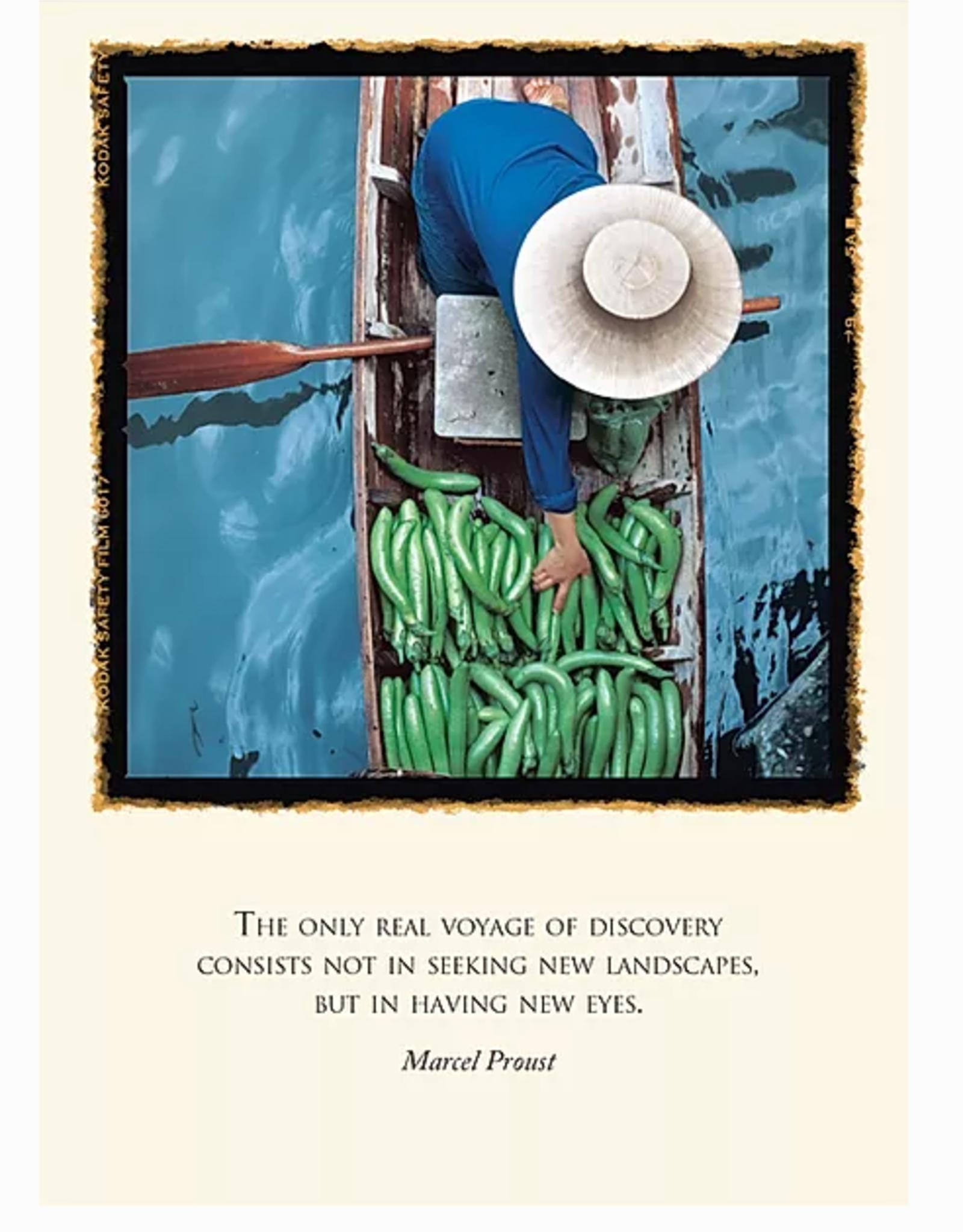 Putumayo Cards Aubergine Verte