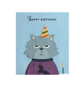 Grumpy Kitty Birthday Greeting Card