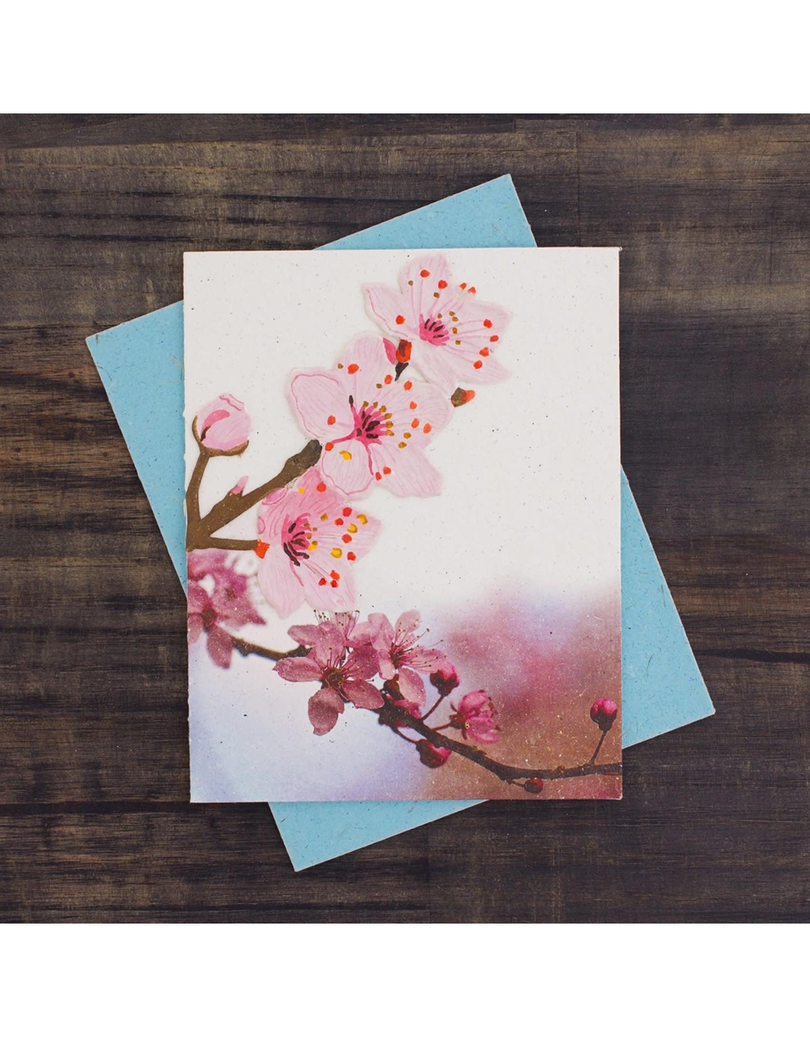 Cherry Blossom Greeting Card, Sri Lanka