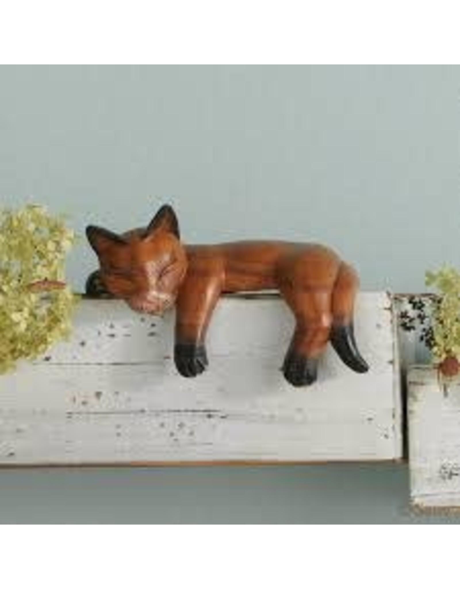 Napping Shelf Cat, India