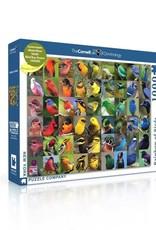 Rainbow of Birds Puzzle, 100 pieces