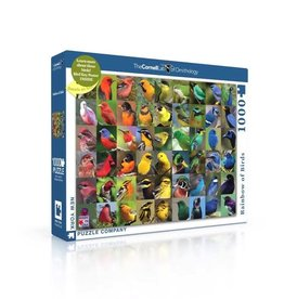 Rainbow of Birds Puzzle, 1000 Pieces
