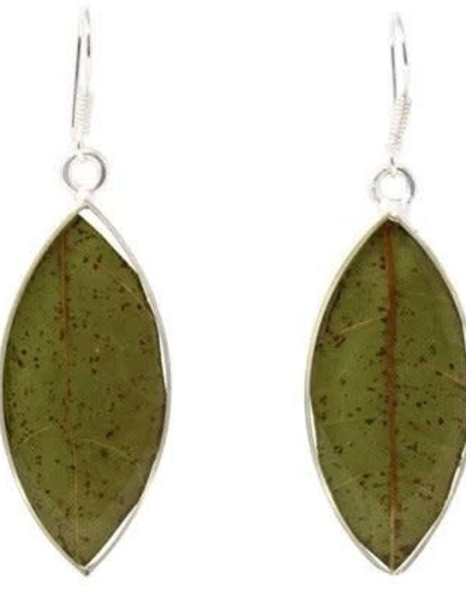 Sterling Plated w/ Real Leaf Earrings