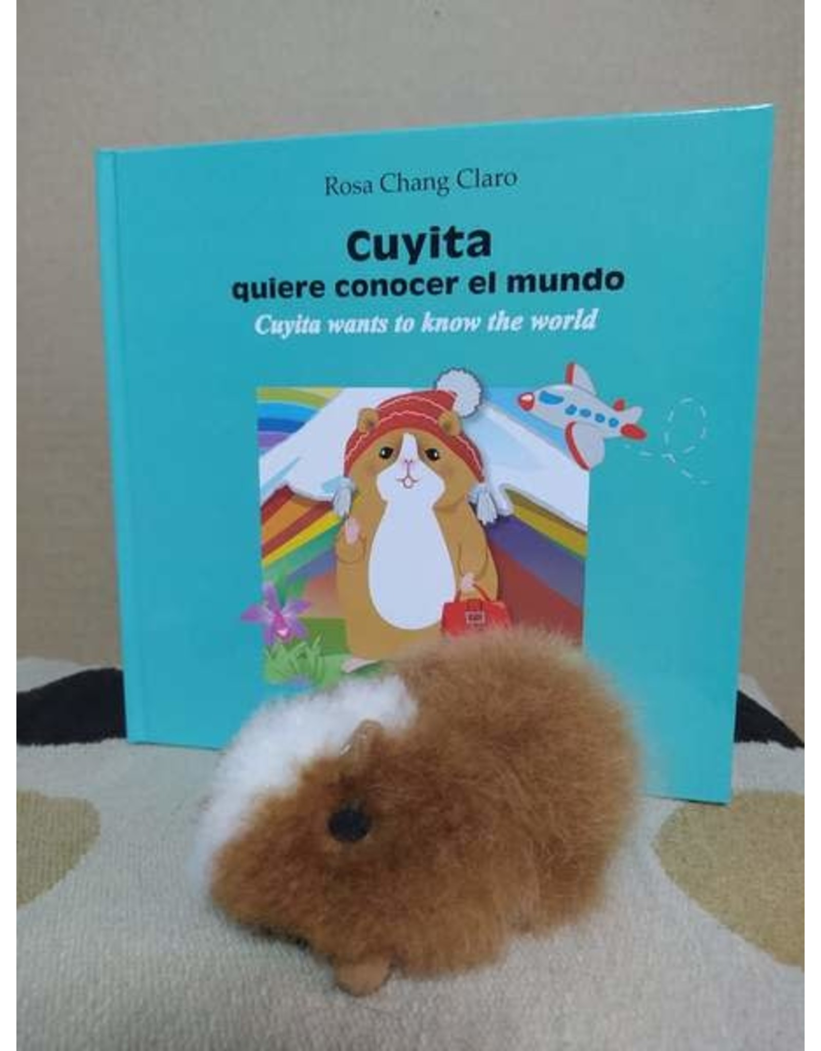 Cuyita Wants to know the World w/ Guinea Pig Toy