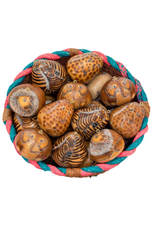 Zoo Mix MEDIUM Gourd Ornament, Peru
