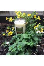 Local, Oak Lane Candle Lemon Verbena