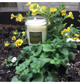 Local, Oak Lane Candle Lemon Verbena