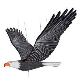 Bald Eagle Flying Mobile, Columbia