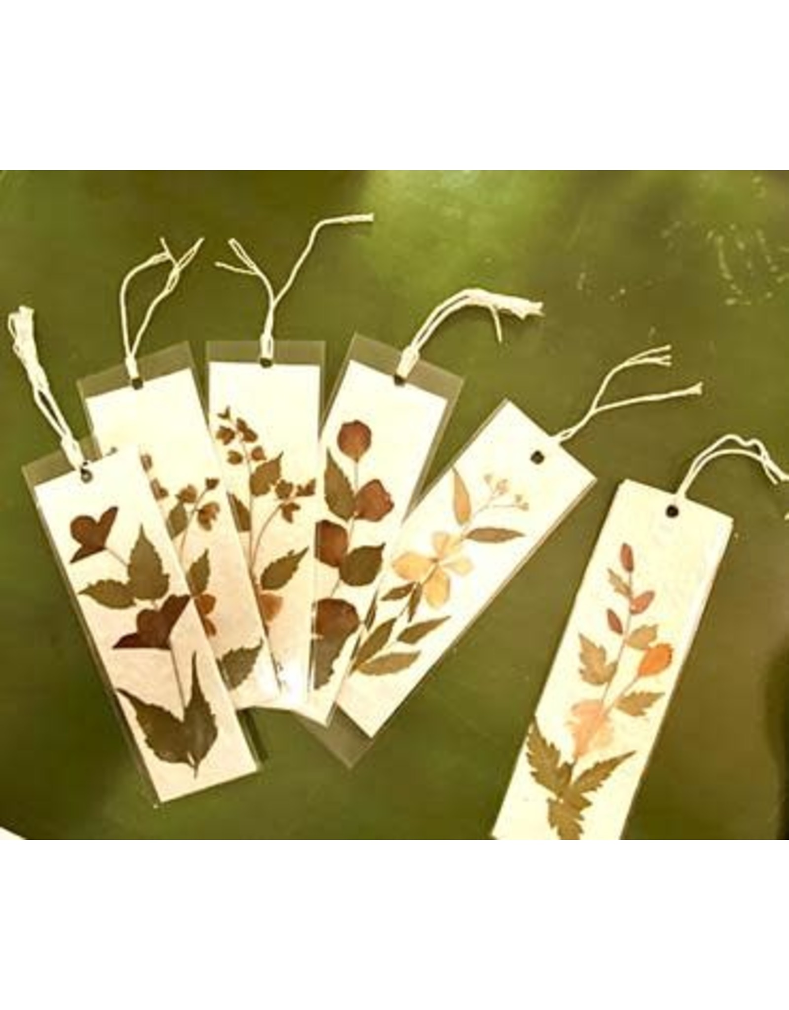 Mulberry Paper Bookmark w/ Dried Flowers, Vietnam