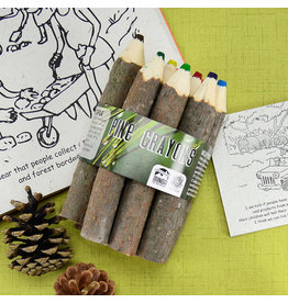 Pine Crayon Bundle, Ecuador