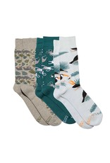 Boxed Set, Socks that Protect the Rainforest