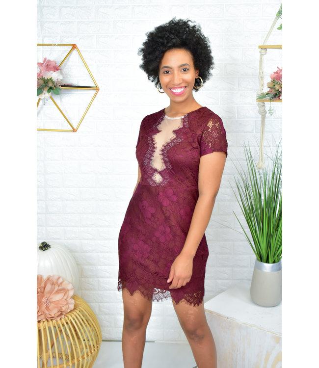 Natty Grace Stand Out Mesh Lace Dress