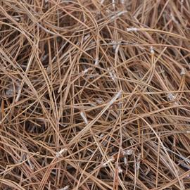 .Pine Straw - Slash - roll