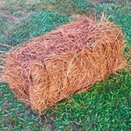 .Pine Straw - Long Leaf - bale