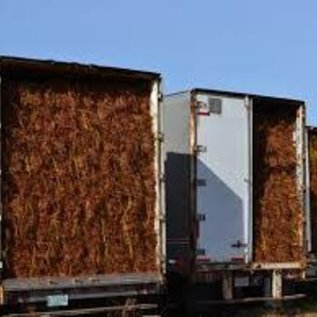 .Pine Straw - Slash - bale