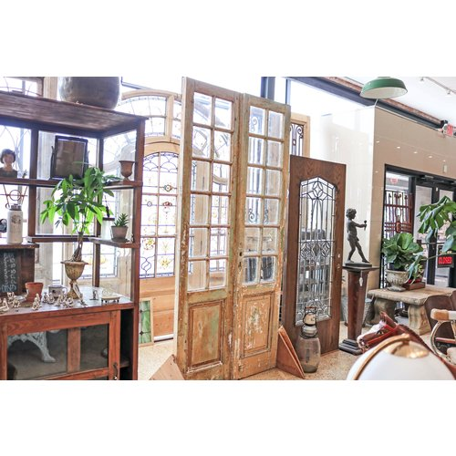 1 Panel 12 Light Double Doors from France