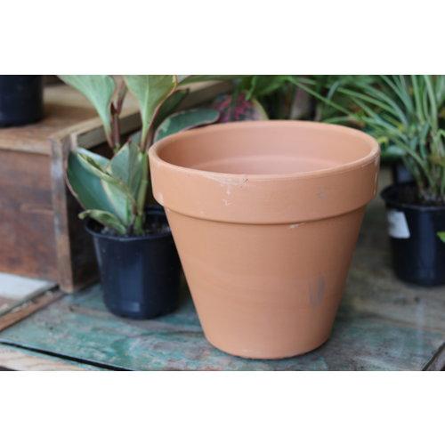 "7.5"" Terracotta Pot"