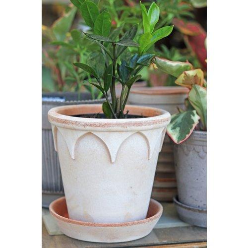Elizabeth 18cm Pot & Saucer Antique Rosa