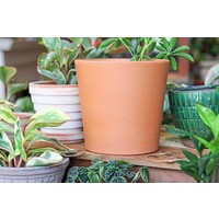"7.5"" Terracotta Flair Pot"