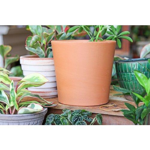 """7.5"""" Terracotta Flair Pot"""