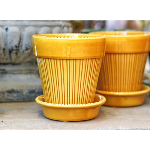 Simona 14cm Pot & Saucer Yellow Amber