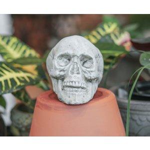 Medium Skull Pot