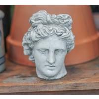 Apollo Pot Head