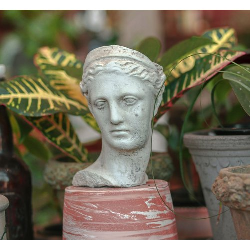 Diana Head & Neck Pot