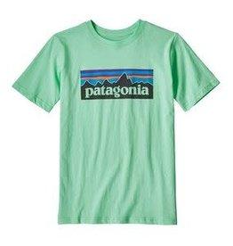 Patagonia P-6 Logo Tee Vjosa Green M(10)