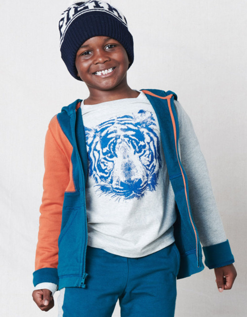 Tea Collection Tiger Graphic Tee Lt Grey 2T-12